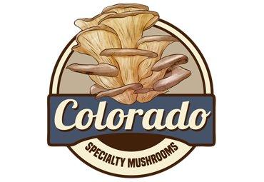 Colorado Boulder web design portfolio
